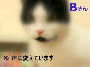 Img_7416_3
