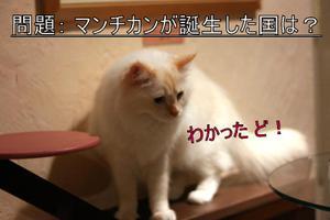 Img_7572_2