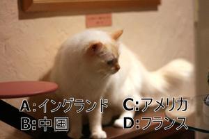 Img_7573_2